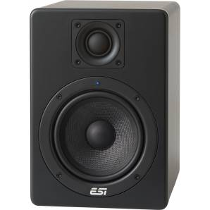 ESI Aktiv 05 Studio Monitor - Single