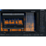iZotope RX 7 Advanced UPGRADE from RX 1-7 Standard (Serial Download)