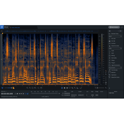 iZotope RX 7 Elements (Serial Download)