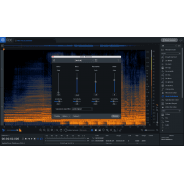 iZotope RX 7 Standard CROSSGRADE from RX Plug In Pack (Serial Download)
