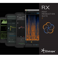 iZotope RX Post Production Suite 2.1 Upgrade from RX 6 Advanced (Serial Download)