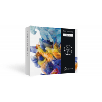 iZotope Elements Suite 4 (Serial Download)