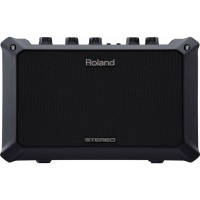 Roland Acoustic Guitar Amplifier - Mobile AC
