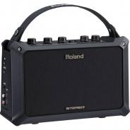 Roland Acoustic Guitar Amplifier - Mobile AC